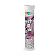 Medium_echinacea-tube1