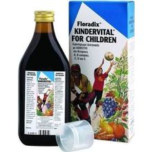 Medium_20160204163157_power_health_floradix_kindervital_250ml